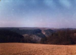 Ці безкраї поля на пагорбах - поселення трипільської культури та їх супутників - лінійно-стрічкової кераміки