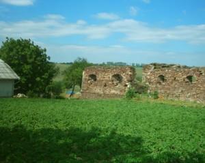 За межами стін - картопляне поле