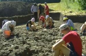 Археологічний розкоп