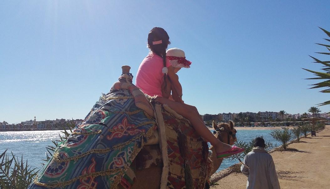 Ціни на катання на верблюді також впали - з десяти до двох доларів за десять хвилин