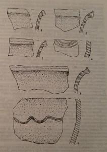 Керамічні матеріали з поселення Молошковичі-Стині