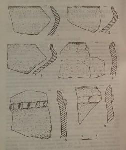 Керамічні матеріали з поселення Туркотин
