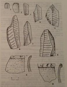 Керамічні та крем'яні матеріали з поселення Туркотин