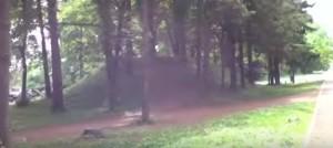 Курган у парку Млинова