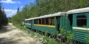 Карпатський трамвай - вузькоколійка у Мізуні