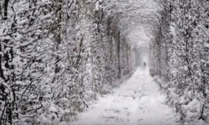 Тунель кохання у Клевані взимку