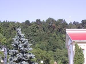 Замкова гора в Косові