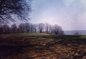 Палеолітична стоянка біля Антонівки