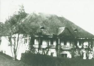 Старе фото Горожанки, палац на місці замку