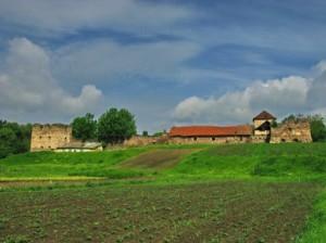 Вид на замок з боку ріки