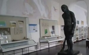 Каменный век в археологическом музее Одессы
