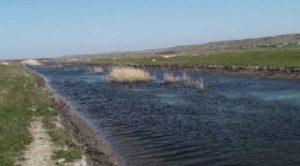 Река Куяльник