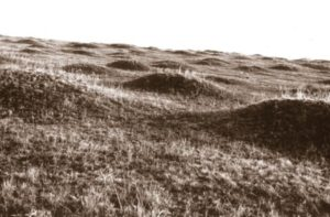 Курганний могильник у Снітині
