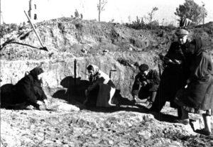 На розкопках літописного міста Вир