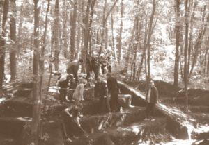 Розкопки лісового кургана