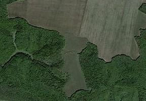 Сухоносівське городище, вигляд із супутника