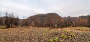 Городище в селі Хмільна