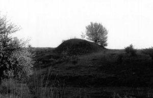 Курган в урочищі Відьманка в Козичанці