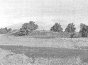 Скіфське городище у Трахтемирові