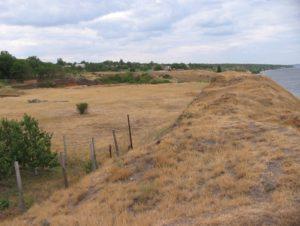 Пізньоскіфське городище у Великій Лепетисі