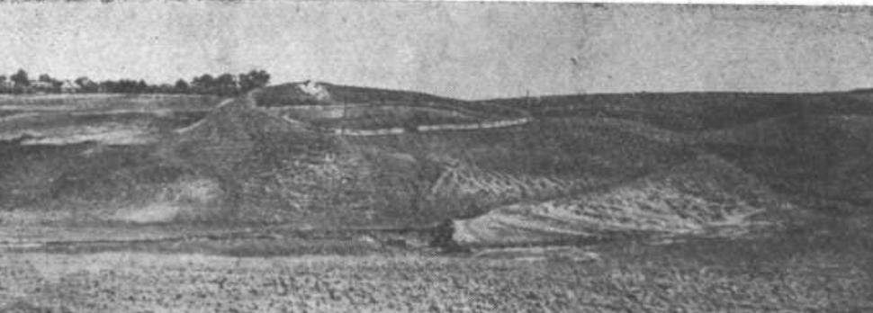 Селевинці городище