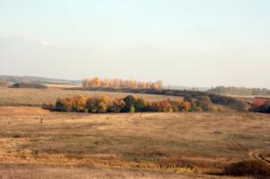 Городище та монастир біля села Вовчок