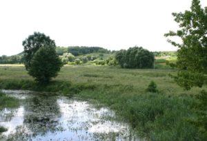 Околиці села Кононча