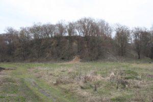 Замкова Гора у Варві