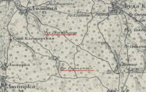 Городище в селі Лозниця