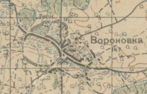 Городище в селі Воронівка