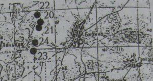 Поселення в селі Биріно