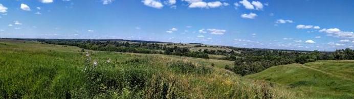 Городище Гнеушево