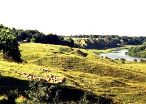 Городище в Калуге