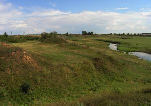 Городище в Давыдовском Малом