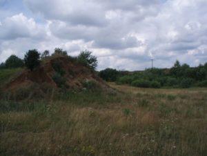 Городище в селе Давыдовске Малое