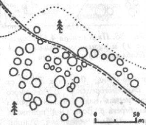 Курганный могильник 2 (Муромцевские курганы) у города Красноармейск