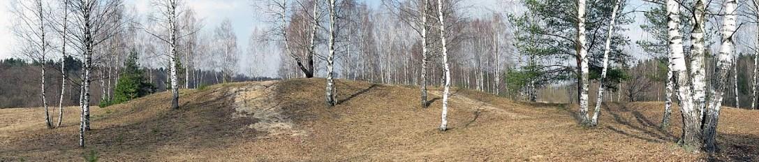 Валы Громковского городища