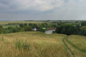 Городище у села Боршева