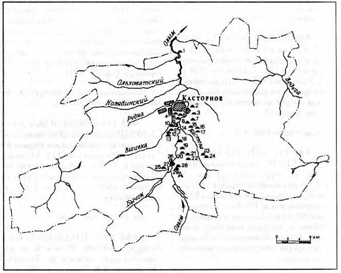 Археология Касторенского района