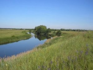 Городище Жидеевка над рекой Усожа