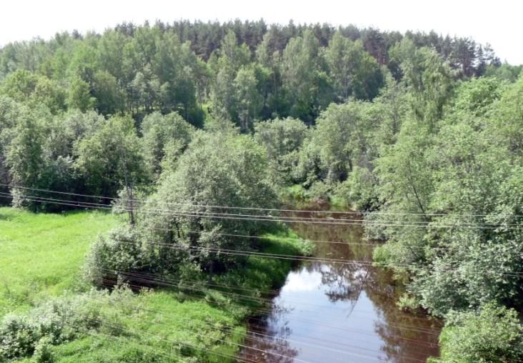Городище в Чебаково