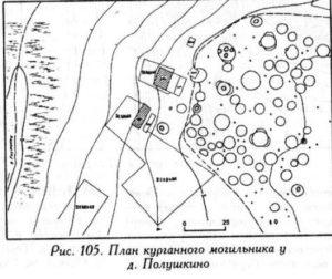Курганный могильник у деревни Полушкино
