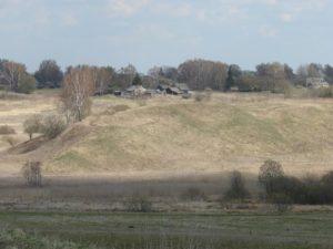 Городище в селе Зверовичи