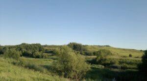 Городище в селе Ижеславль